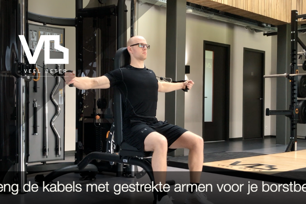 Kracht: seated cable fly